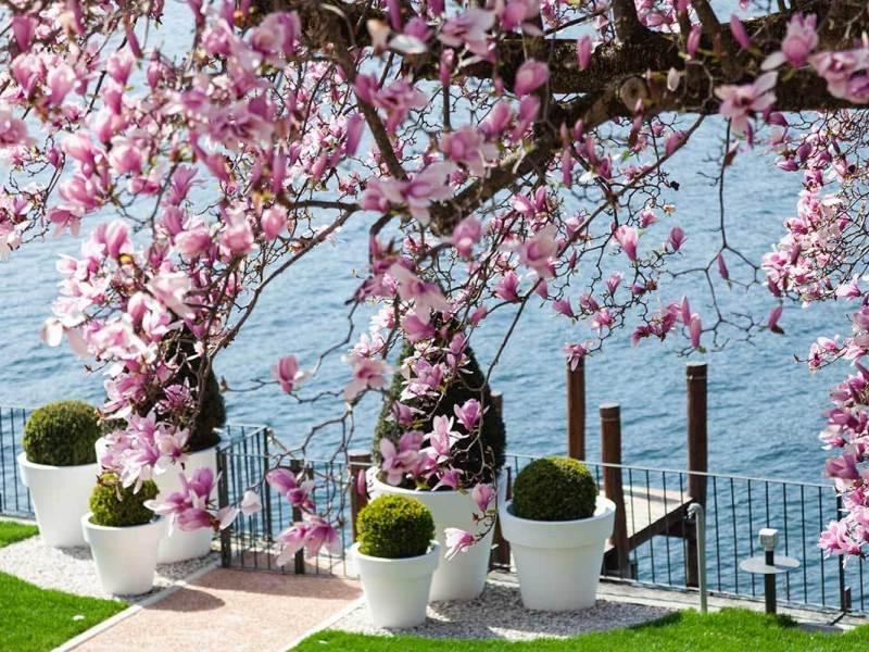 Lago_Orta_Bifora65_Gallery_35
